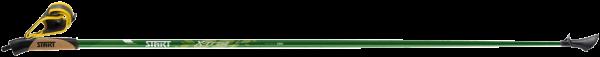 Xトレイル ライトグリーン 4500C